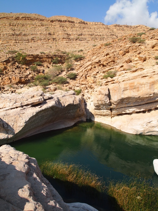 one of the swimming holes at the wadi