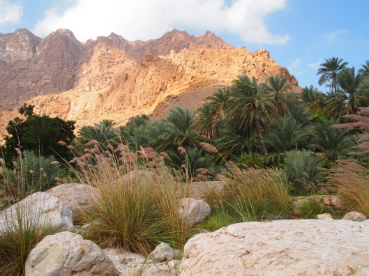 The lower part of Wadi Tiwi