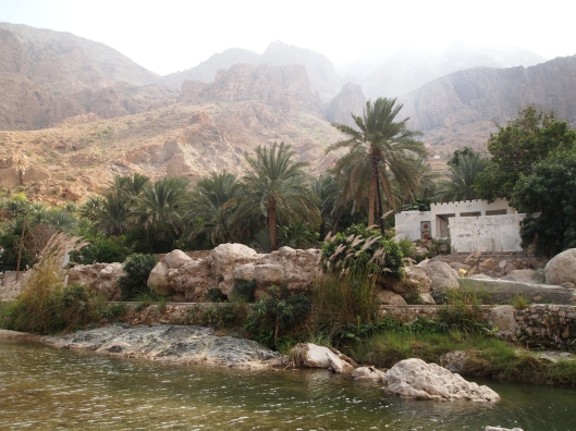 more of Wadi Tiwi