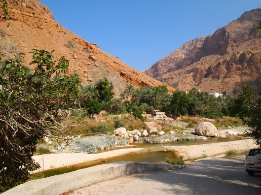 another shot of wadi tiwi