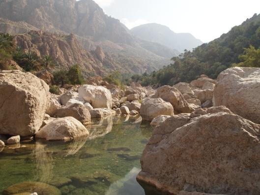 a stream at Wadi Tiwi