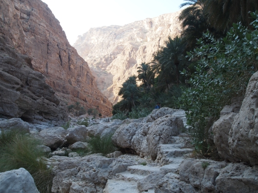 this is as far as we get into the wadi before the sun starts dropping