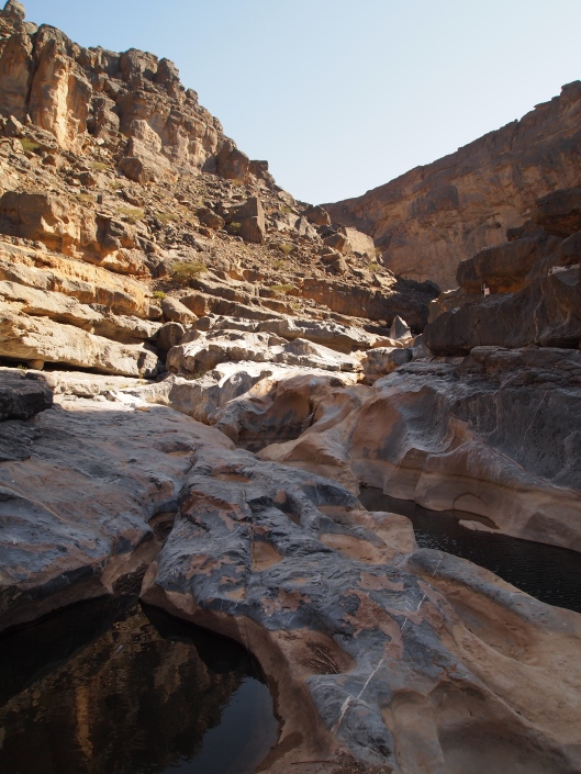 more of wadi damm