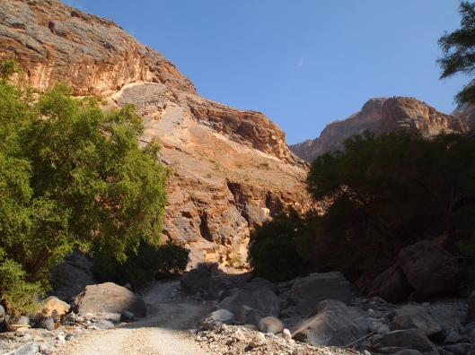 the road into wadi tanuf