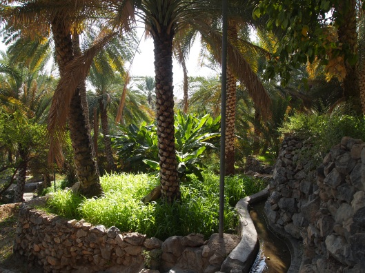 the lush plantations of Misfat al Abriyyan