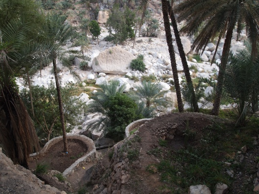 the path to the bottom of the wadi