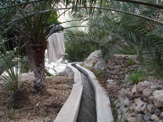 the falaj in Wadi Tiwi