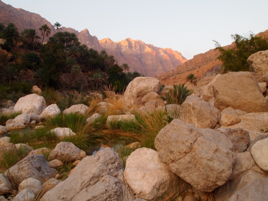 Wadi Tiwi at sunset