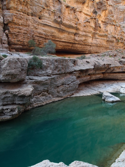 one of the early pools in Wadi Shab
