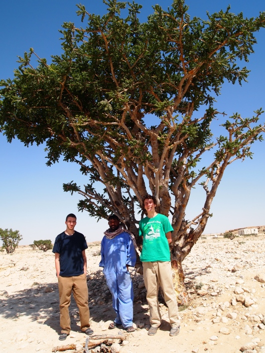 "Adam, our ""guide,"" and Adam under a frankincense tree"