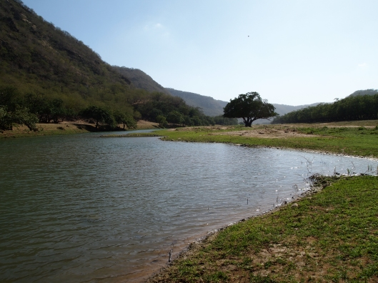 Wadi Darbat ~ no swimming allowed!