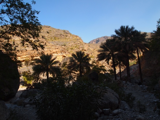 the view from the canyon to the wadi bed