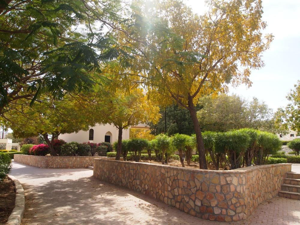 the falaj daris ~ a UNESCO World Heritage Site (6/6)