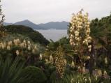 green island near Geoje-do, South Korea