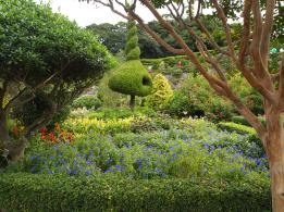 topiary at Geoje-do, South Korea