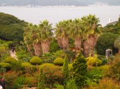 a privately owned island covered in gardens near Geoje-do, South Korea