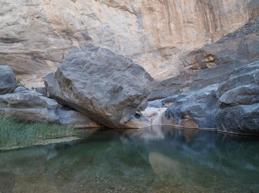 a pool at Wadi Damm near Ibri, Oman