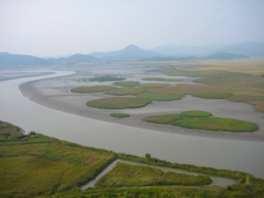 Suncheon Bay in South Korea in the fall.