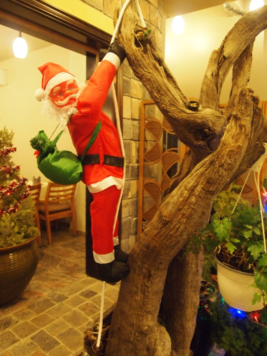 Santa dangles from a tree. :-)
