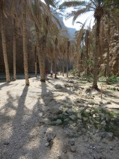 entering Wadi Shab