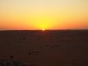 sunset. :-)