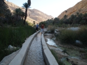 walking out along the falaj