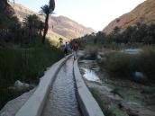 walking out along the falaj
