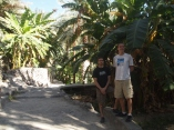 Alex & Adam next to their favorite fruit: banana palms