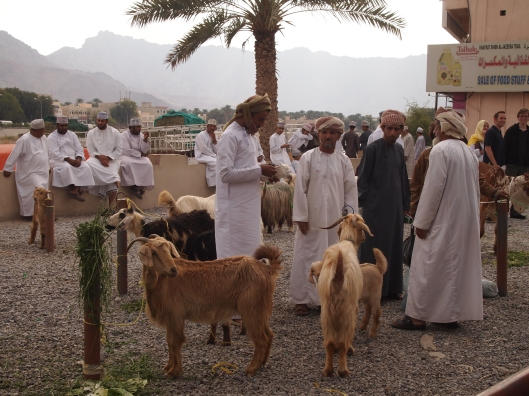 the goat herders
