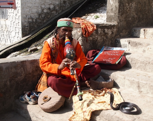 a unique snake charmer in Rishikesh, India