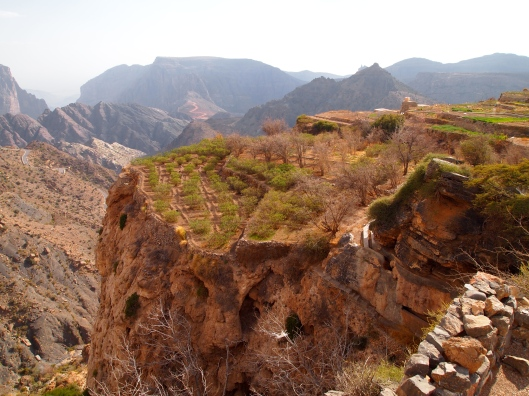 Al Aqr on Jebel Akhdar ~ the village of the roses