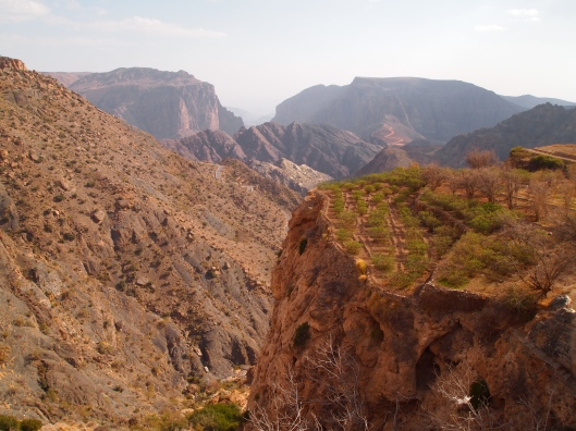 the view of Al Ayn and the gorge on top of Jebel Akhdar