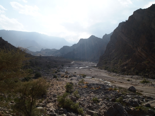 the wadi widens
