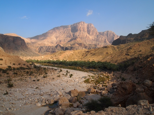 views further back in the wadi