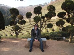 Alex at the Boseong Tea Plantations in South Korea