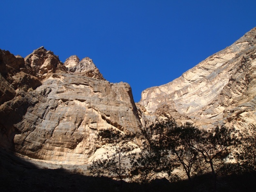 Looking up toward the ridge of An Nakhur Gorge