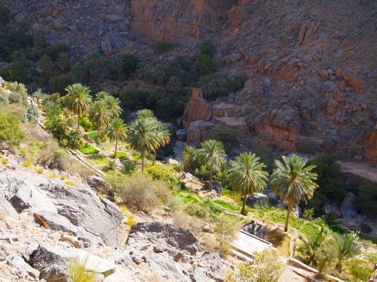 looking down into some farms in the wadi