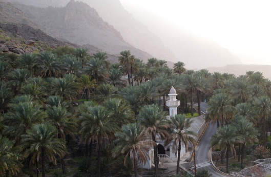 parting view of the mosque, mountains and date palms