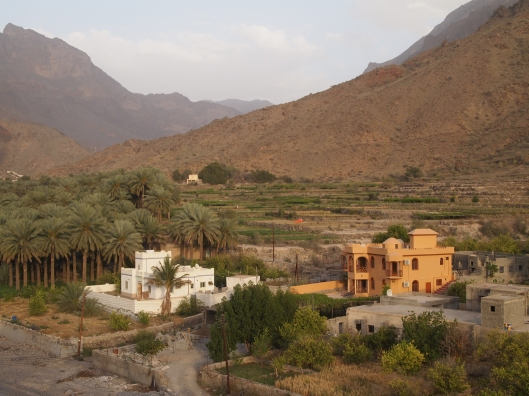 houses and terraces in Wadi Bani Kharous
