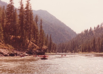 rafting down the Salmon River