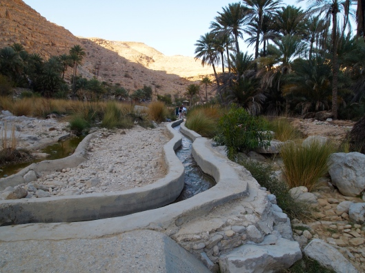 Many people use the aflaf in Oman as pathways to walk on.  This one is at Wadi Bani Khalid in Oman.