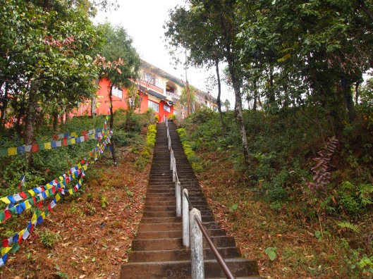 Pathway of enlightenment ~ leading to a Buddhist temple in Pokhara, Nepal
