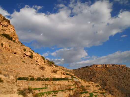 the terraces of Jebel Akhdar on Valentine's Day