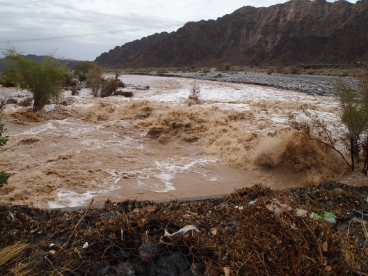 one of the raging wadis on the way to Ibri