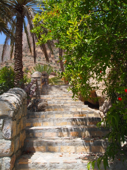 partly shaded Persian steps alongside the pomegranates