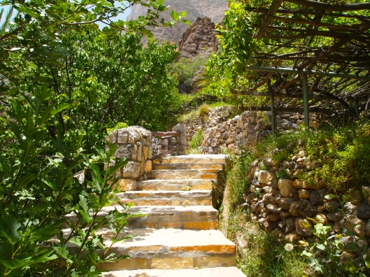 more of the Persian steps