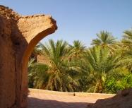 ruins and gardens of Adam