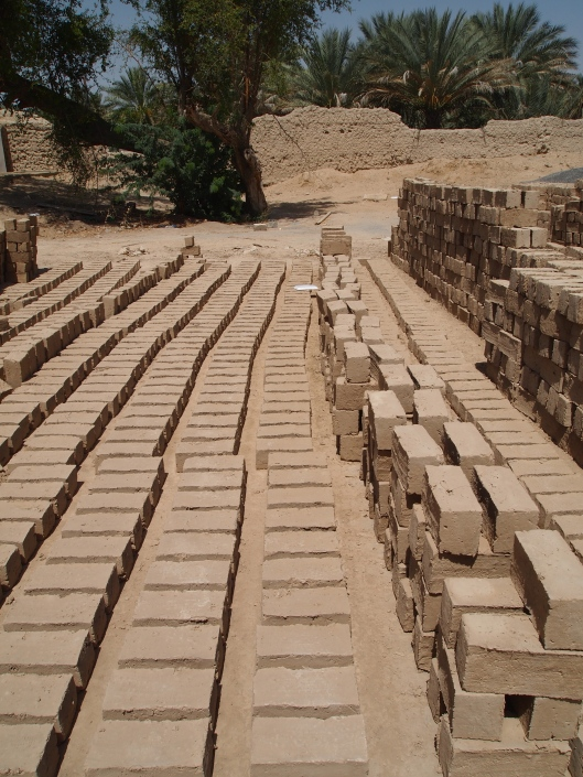 mud bricks lined up for the restoration project